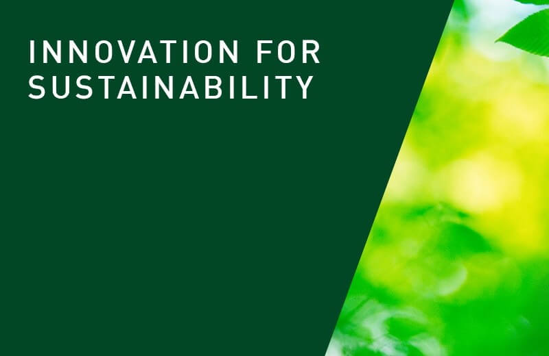 How Important Are Sustainability and Innovation for the Success of a Business?